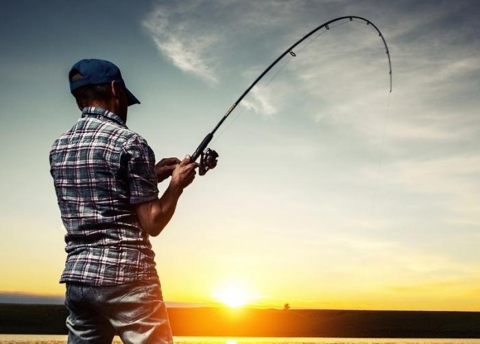 Спиннинг для удачного улова